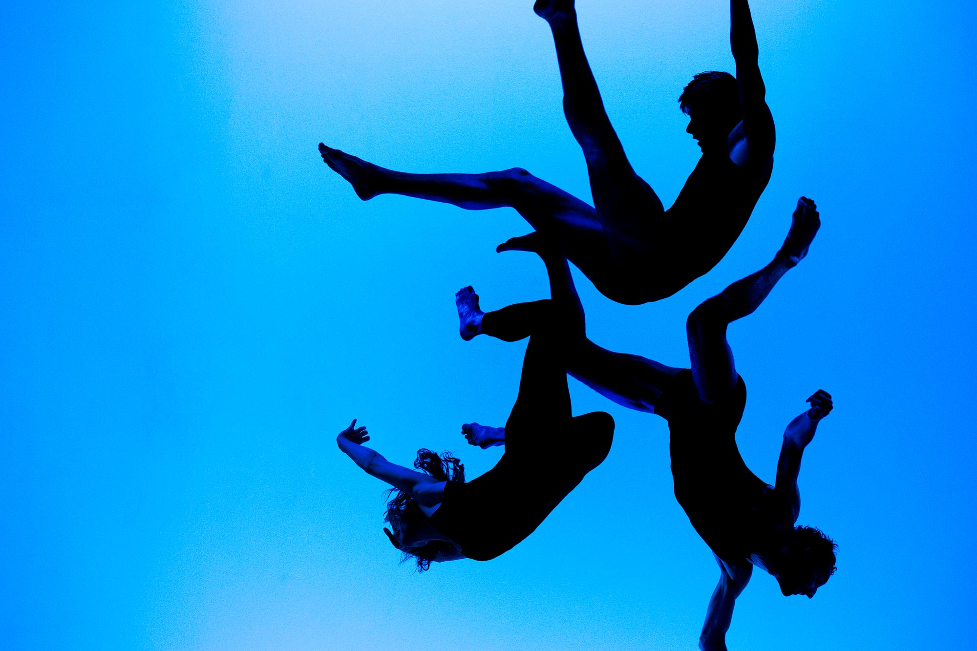 BLAUW - SALLY Dansgezelschap Maastricht